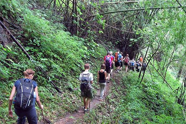Trekking-new-route