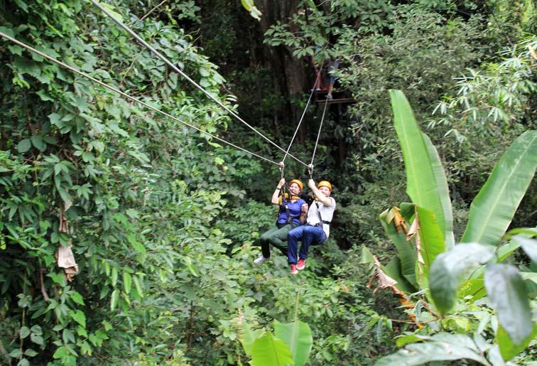 1 Day Trekking Canopy Adventure